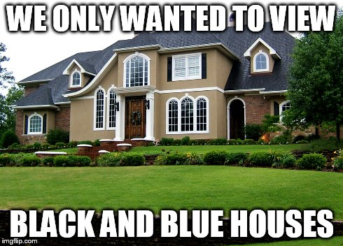 Black and Blue House